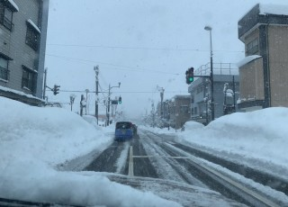 豪雪の正月